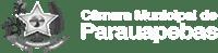 Camara Parauapebas