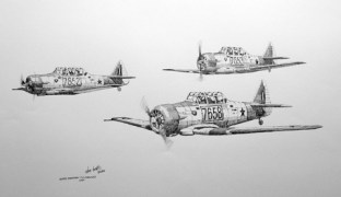 T-44-SAAF-Harvard-Form-O2-W