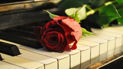The Piano [Fiction]