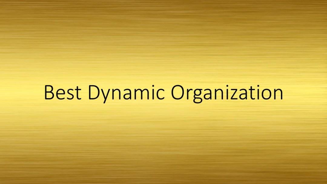 Best Dynamic Organization
