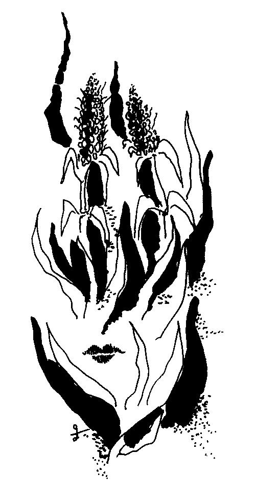 ekkadi-7