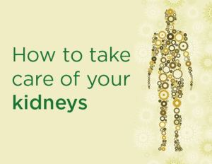 How to Take Care of Kidney - Easy Steps
