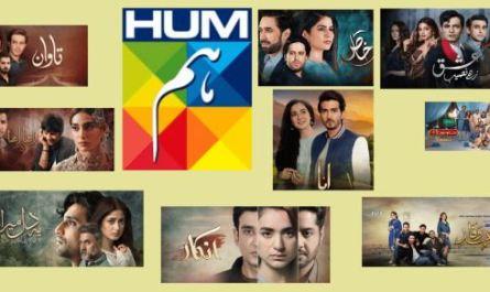 Best Hum Tv Dramas List in 2020