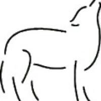Het fokken van rashonden. I.