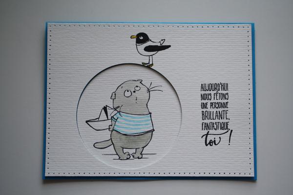 Petit chaton marin