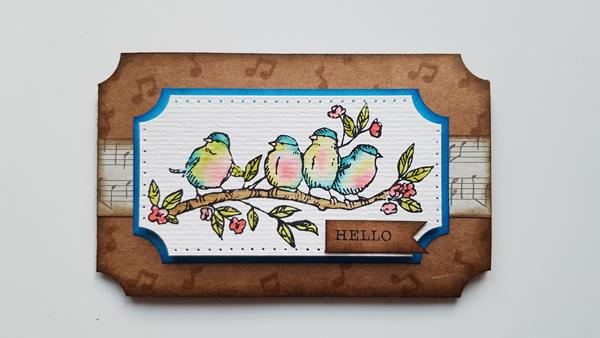 Nouveaux tampons oiseaux de Stampin'up.
