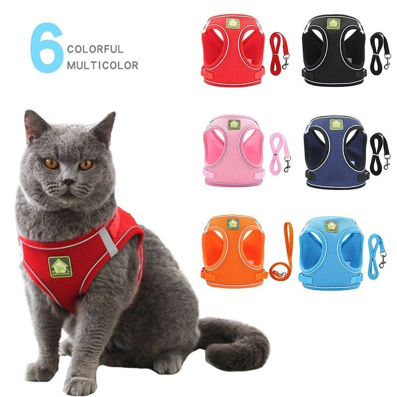 Pet Harness With Leash