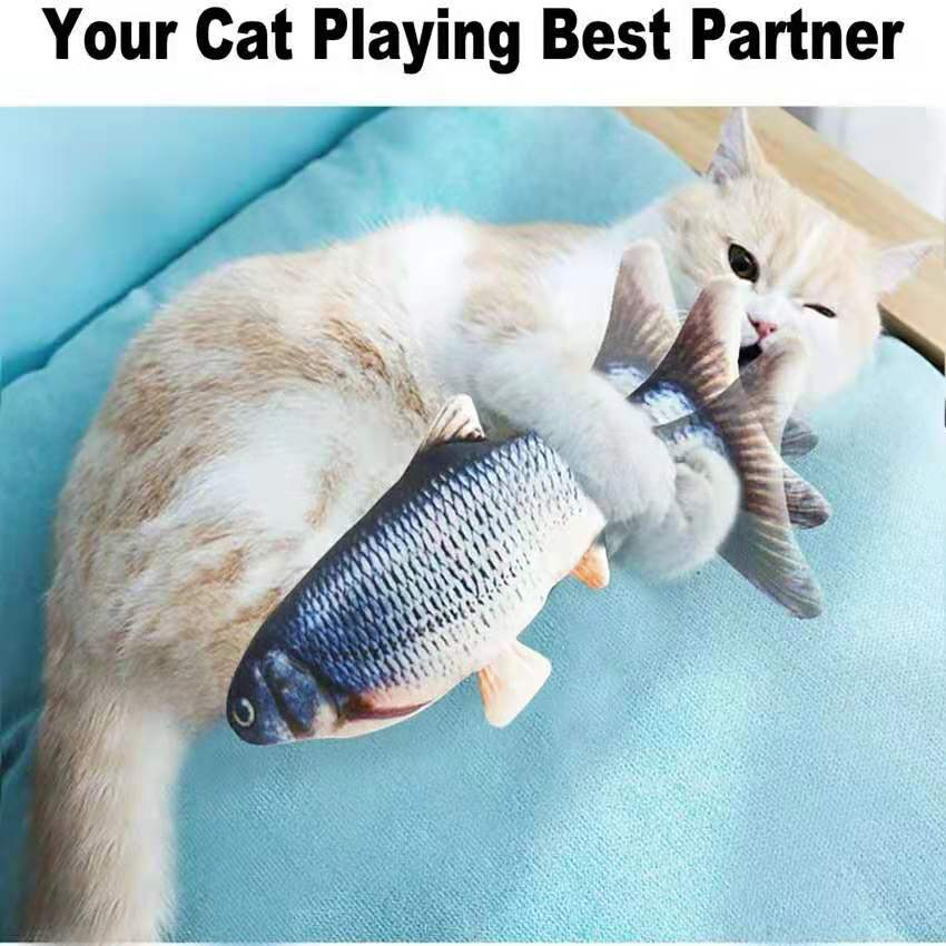 Interactive Fish Toy