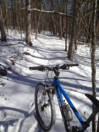 jackrabbit-snow
