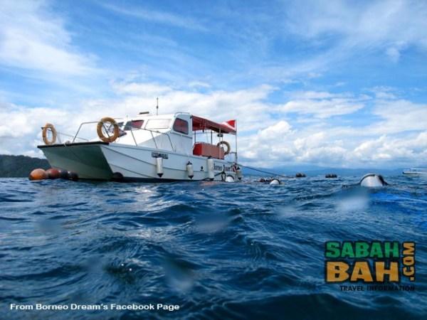 Borneo Dream's custom-built, catamaran aptly named Borneo Dream 3
