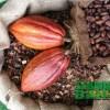 Teck Guan Cocoa Museum