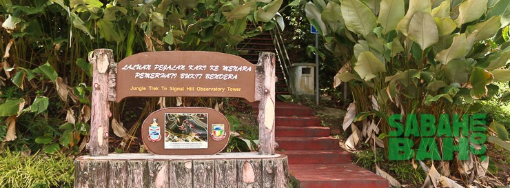 The Nano Jungle Trek at the back of the city is a 7 min walk through lush, tropical rain forest and is a free activity in Kota Kinabalu.