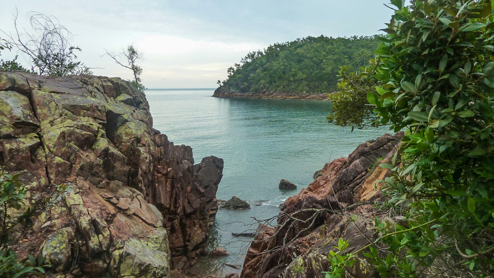 a photo of a secluded cove on hinchinbrook island.