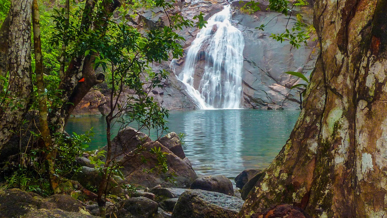 a photo of a waterfall along the hinchinbrook island trail.