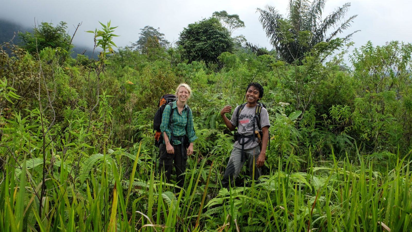 a photo of two hikers in the jungle in gunung leuser national park.