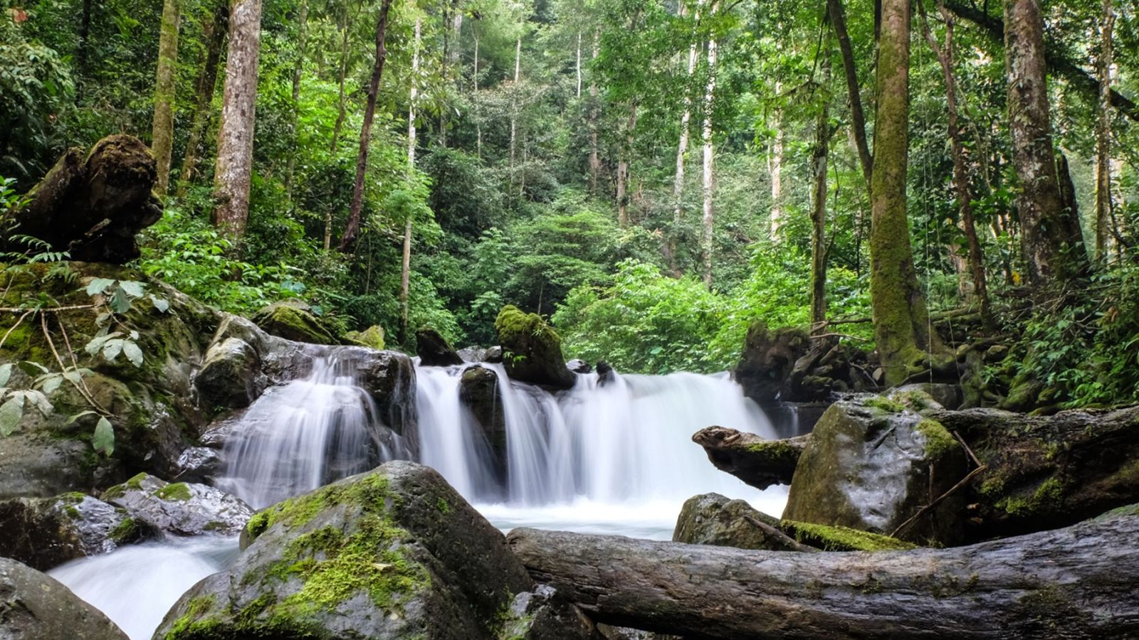 photo with long exposure of a waterfall in gunung leuser national park