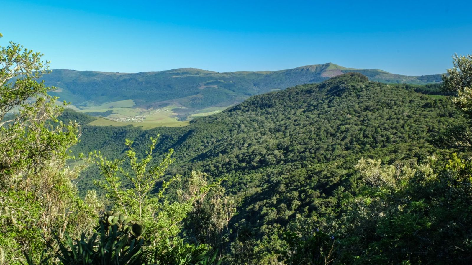 a photo of a valley taken from a hill on the amathole trail.
