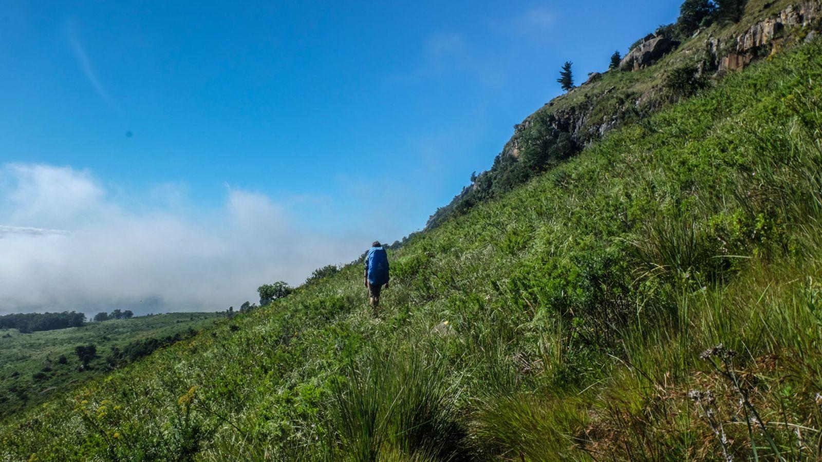 a photo of a hiker walking on the amathole hiking trail.