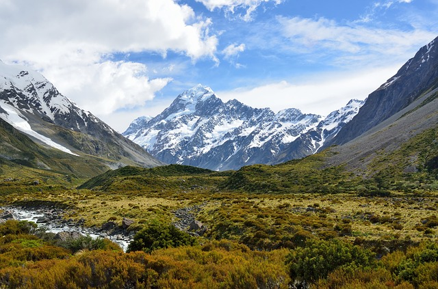 NZ Landskab
