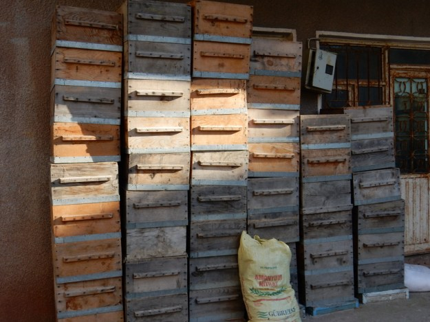 Bee hives stacked in front of a farm house