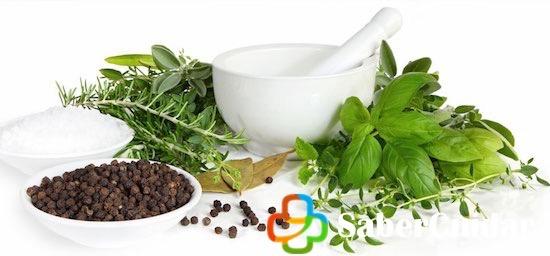 El cipres y sus propiedades medicinales