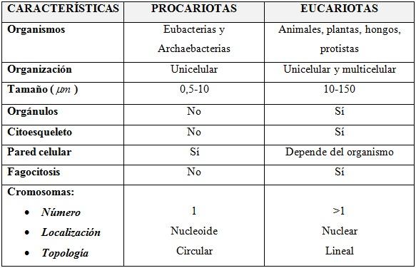 www.saberespractico.com