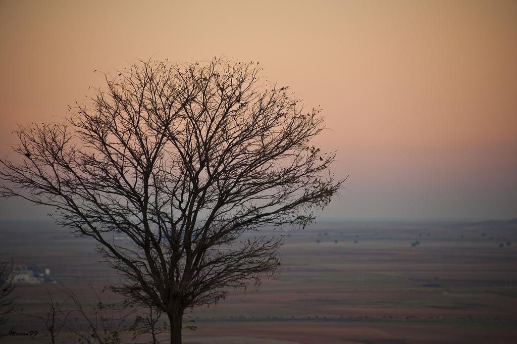 Atardecer en La Mancha. Autora, Marian FF
