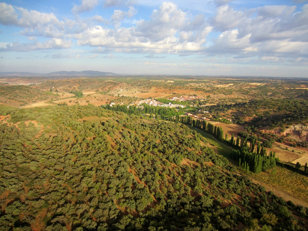 OTOÑO campo de Montiel 2