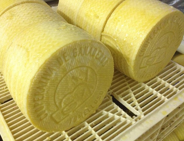 queso-cooperativa-ganaderos-manchegos-tomelloso