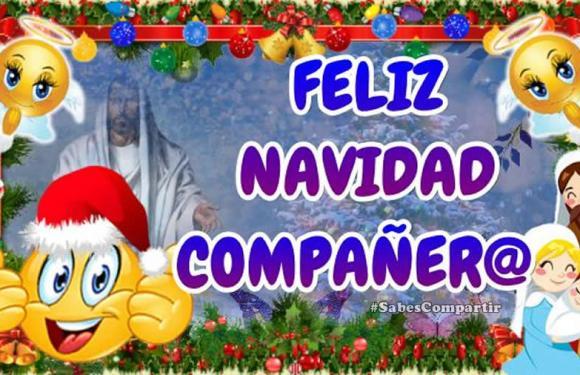 Felices fiestas de Navidad Compañeros y Compañeras