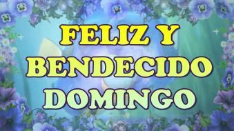 FELIZ Y BENDECIDO DOMINGO