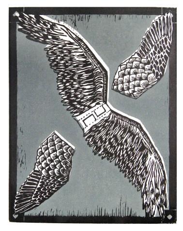 Screech Owl Wings
