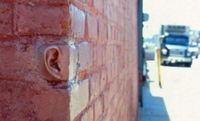 orejas-paredes-755x490