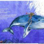 sabine-hautefeuille-illustration-baleine-mers-oceans