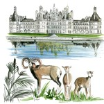illustration-aquarelle-chambord