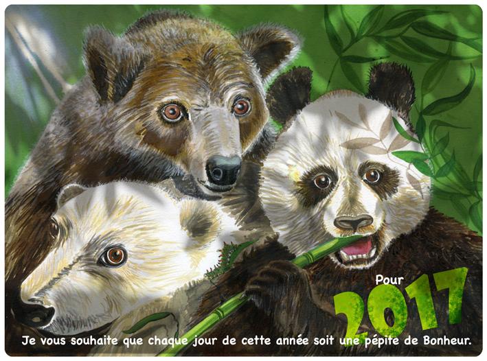 3 ours-panda-ours blanc- ours brun- compère-voeux_illustration jeunesse