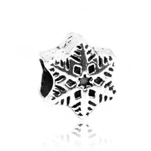 Charm Silver Snow