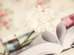 flower-on-book-tumblr