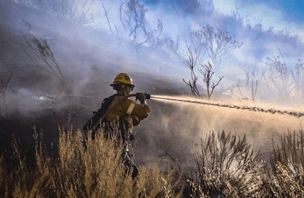 2020 wildfire season