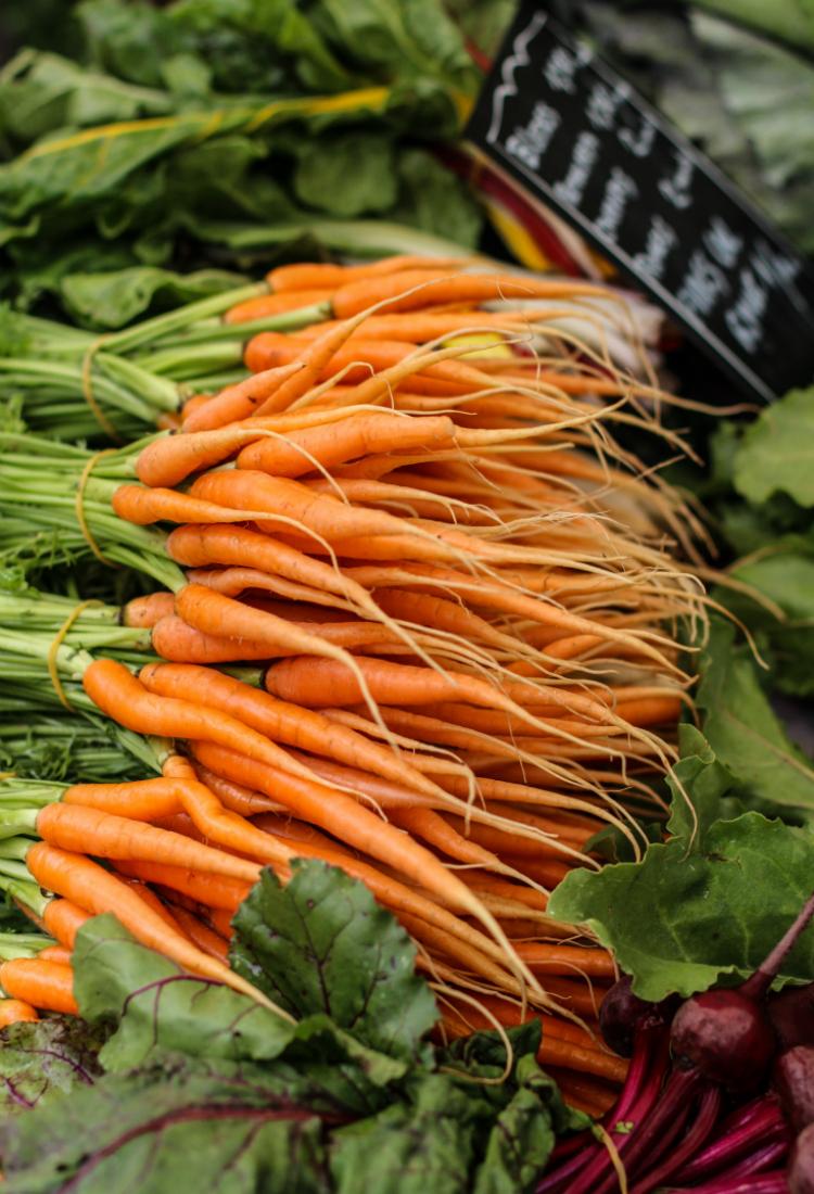 zanahoria-organica