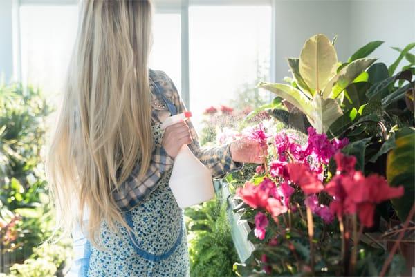 tips para cuidar las flores