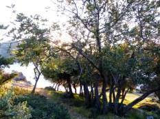St Nicholas Island ghostly shadows