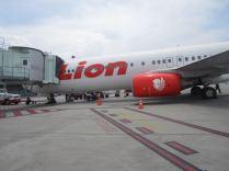 Lion Airways