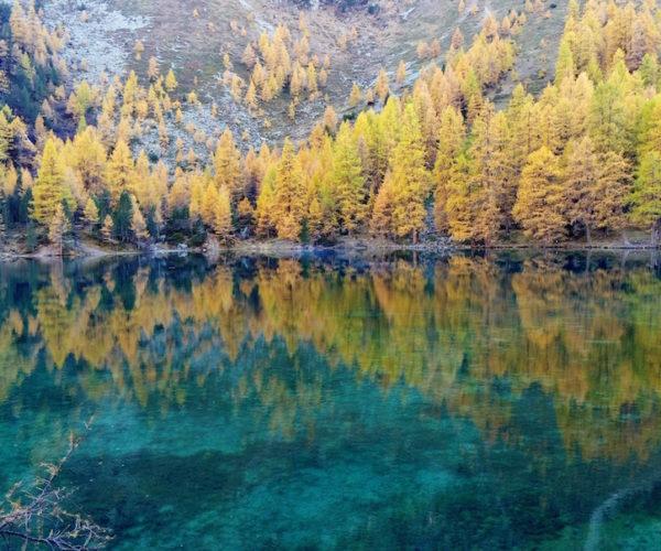 Oberengadin Herbst
