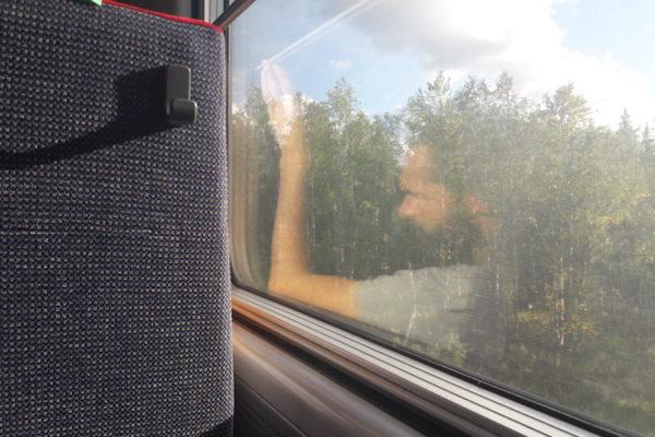 Endlich durfte ich mal wieder Zug fahren –und das nicht zu wenig. Mit einer Verspätung von fast 2h machte sich der Zug von Abisko auf den ca. 6 stündigen Weg nach Luleå. Gesehen haben wir leider keinen Elch, dafür genug Birken für die nächsten Jahre. Als Übernachtungsort suchten wir uns ein schönes Apartment ausserhalb von Luleå aus.
