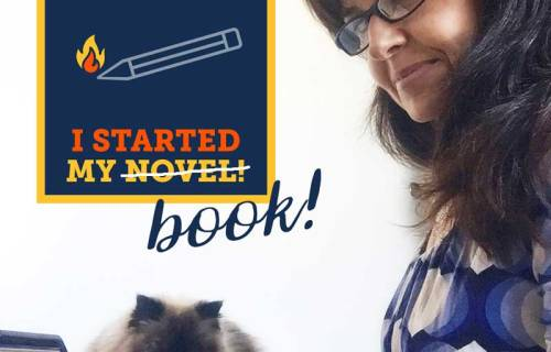 sabrina cadini nanowrimo writing project book creative entrepreneurs life-work balance miss mocha cats teach quality of life wellbeing
