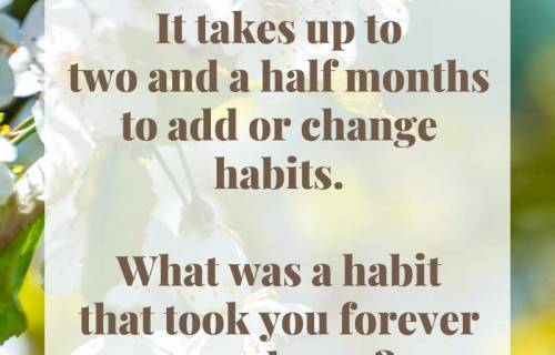 sabrina cadini monday moves me habits embrace change life-work balance brain fitness coach productivity