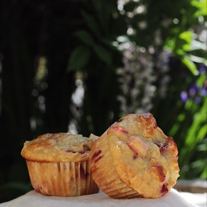 Rhubarb from the garden and into muffins