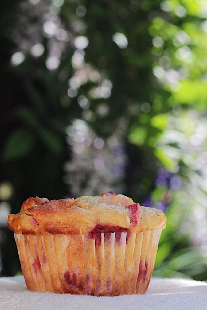 Lone strawberry rhubarb muffin