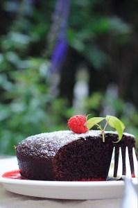 Chocolate Raspberry Cake in the Garden